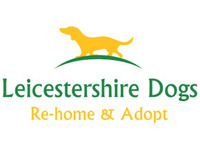 Leicestershire Dogs - Friday-Ad