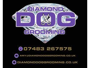 Diamond Dog Grooming - Friday-Ad