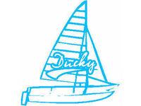 Ducky Catamarans UK - Friday-Ad