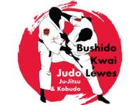 Lewes Judo - Bushido Kwai Dojo - Friday-Ad