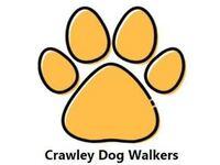Crawley Dog Walkers - Friday-Ad