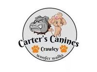 Carter's Canines Crawley - Friday-Ad