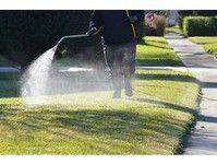 GB Pest Control - Friday-Ad